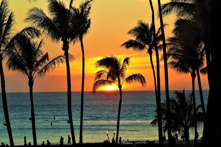 Enter Paradise: 7 Best Things to Do in Maui